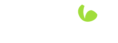 Dragon Security & Electrical Logo